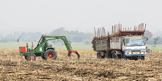 Government mulling sugar export via barter trade with other nations