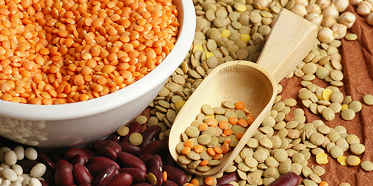 Govt control on pulses, edible oil trade to go on till Sept 2016