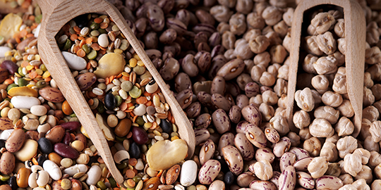 Govt expedites import of pulses to increase availability
