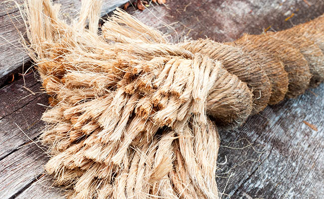 India likely to persuade Bangladesh for lifting jute export ban