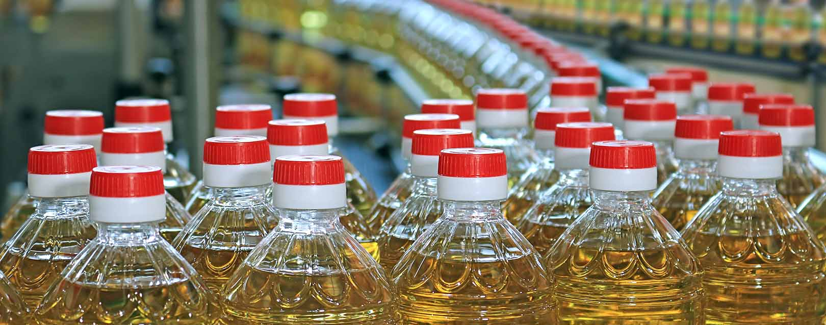 India's veg oil imports up 19% in Nov15-Mar16