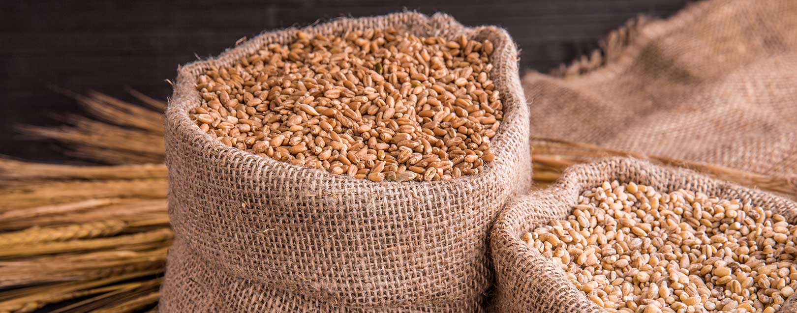 India imports 140,000 T wheat from Aus in FY16