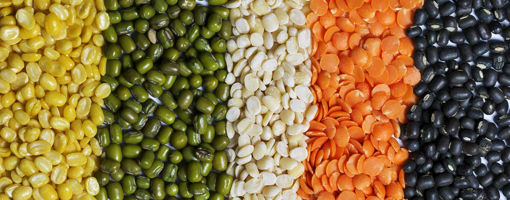 Govt. hikes MSP for pulses to boost production