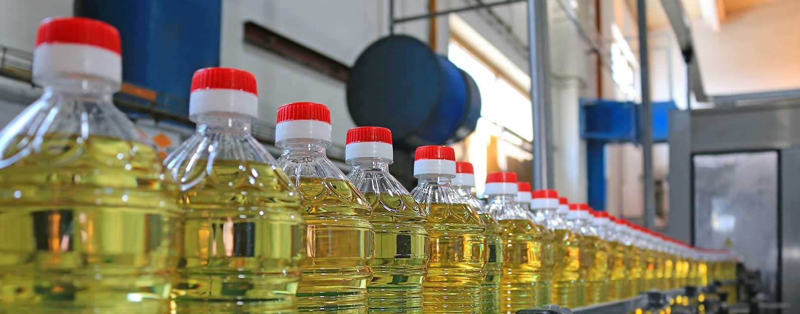 Vegetable oil imports decline by 25% in May