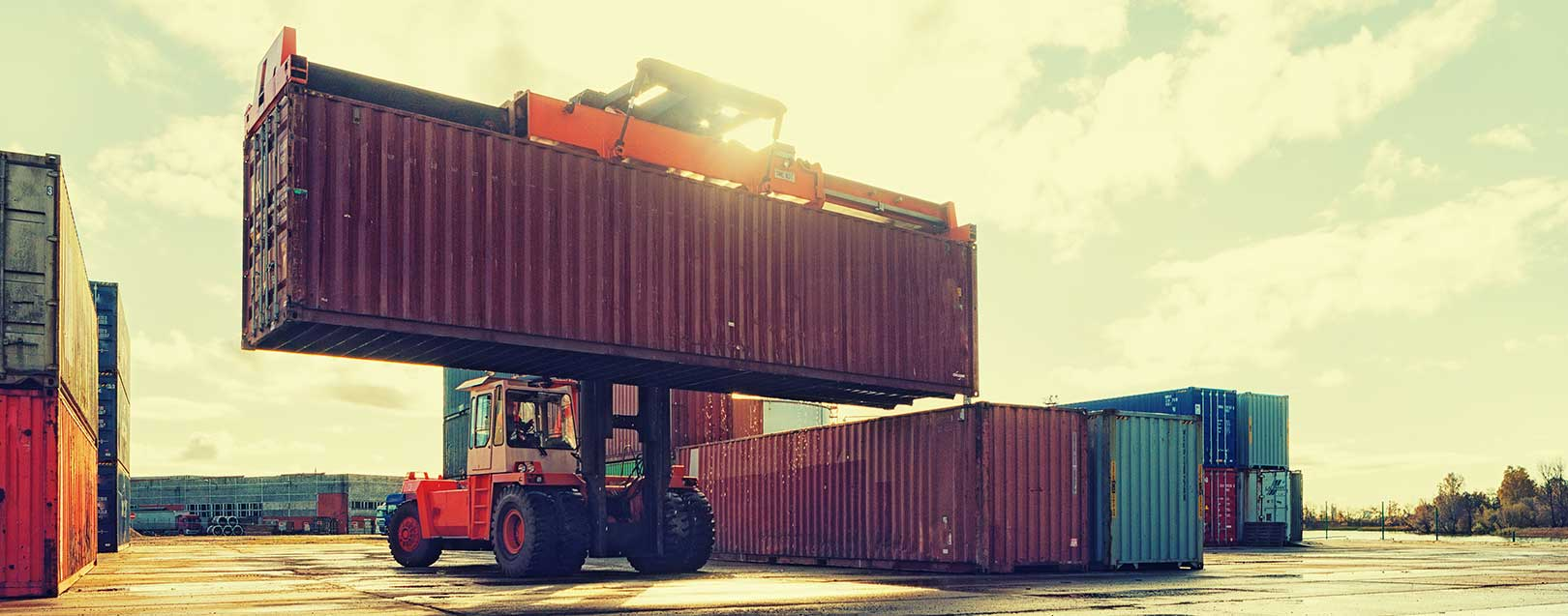 Steps are being taken to boost foreign trade: DGFT