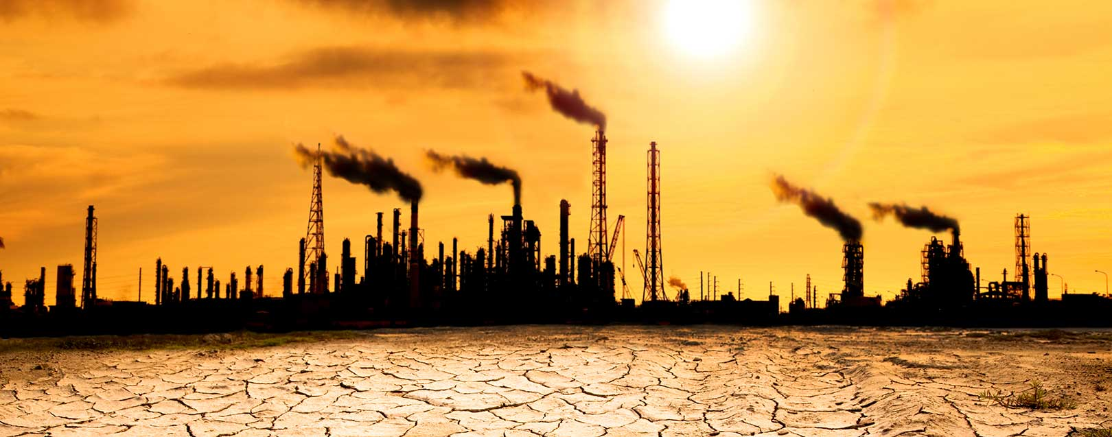 Climate effort won't quench crude oil thirst, demand to peak further