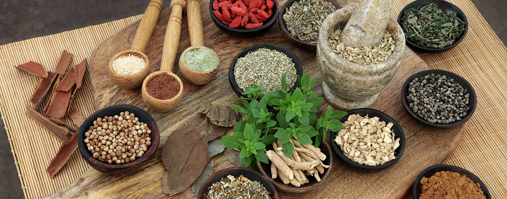 AYUSH Minister seeks inputs from global experts to turn India into Ayurveda hub