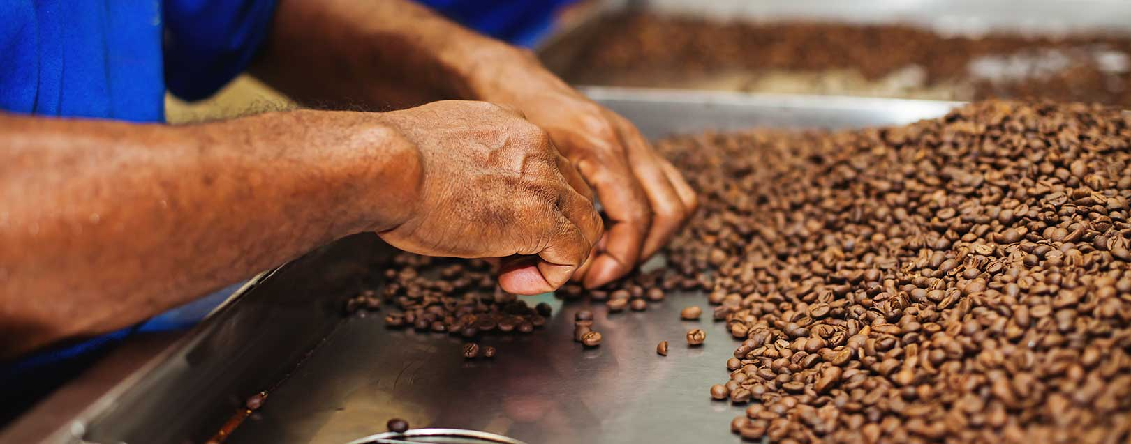 Tata Coffee to set up facility in Vietnam