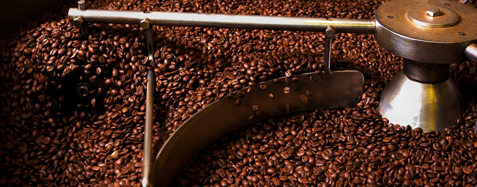 India cuts coffee production estimate for 2016-17 by 1%