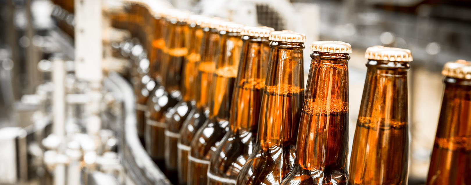 Beer industry to grow at 7 5 between 2017 and 2021 for Craft beer industry statistics