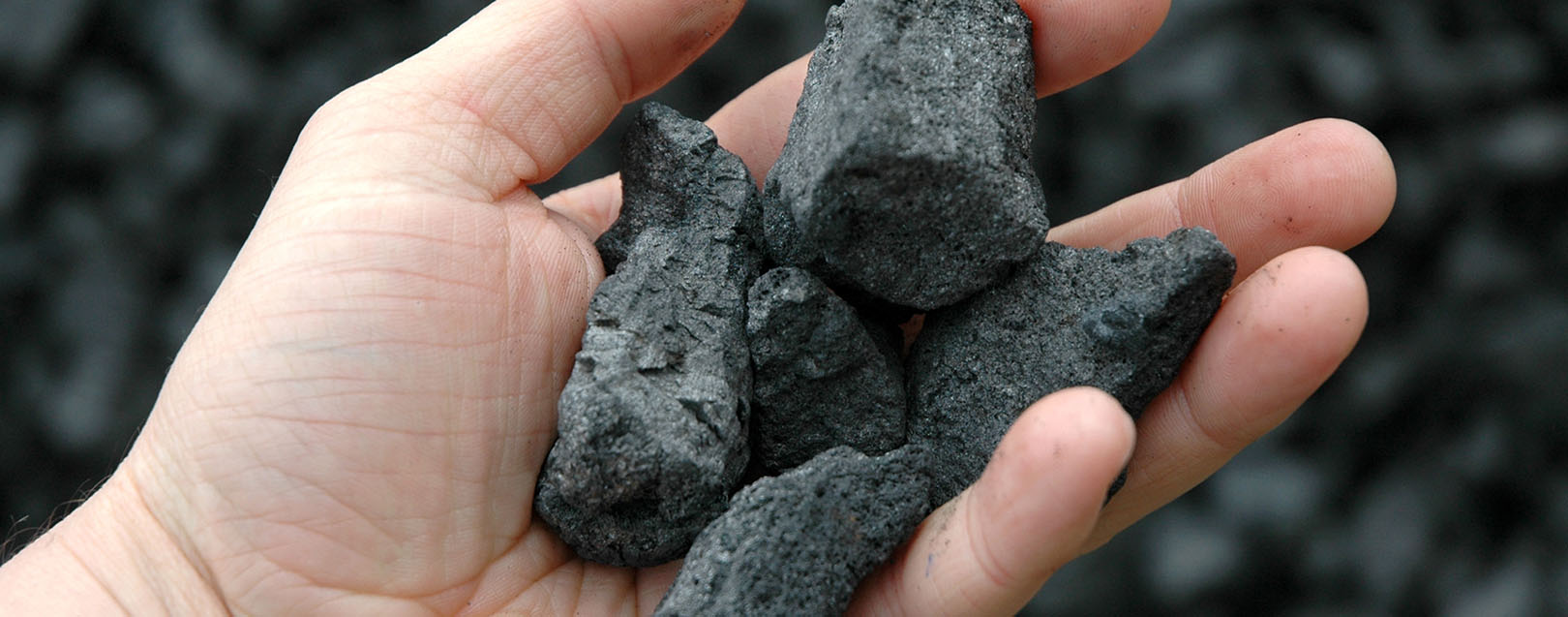 Coal India zeroes in on Australia and South Africa for acquisitions