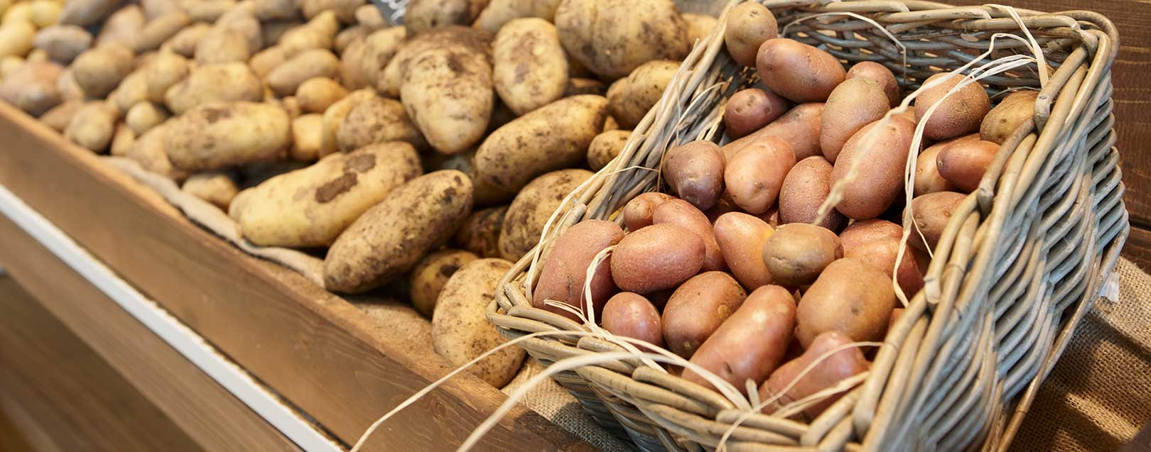 UP govt to buy one lakh metric tonne of potatoes at Rs 487 per quintal