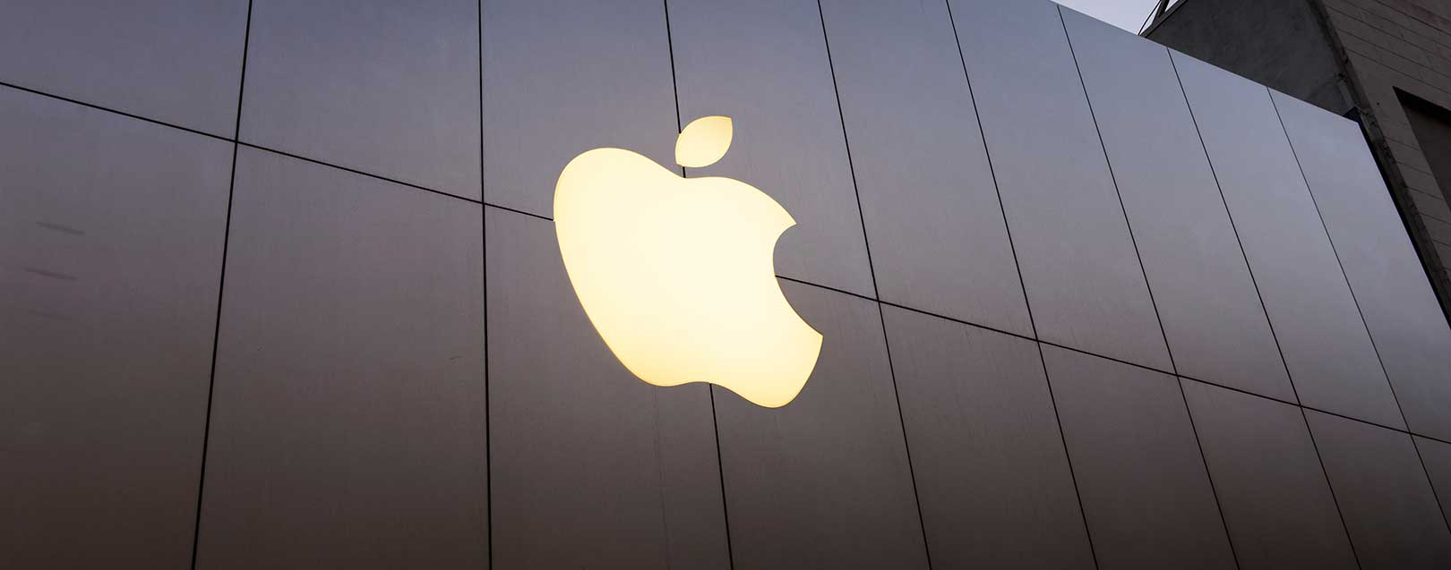 Apple optimistic of capturing the growing share of India's market