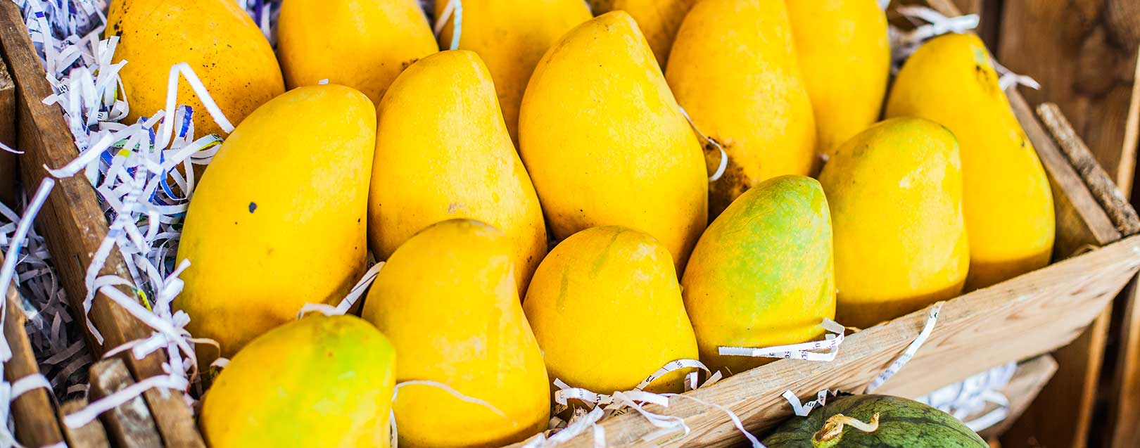 First consignment of Indian mangoes arrive in Australia