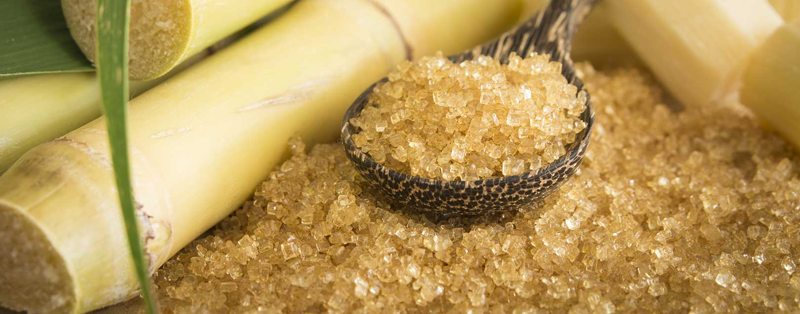 Sugar price rise 'inevitable' due to sugarcane FRP hike: NFCSF