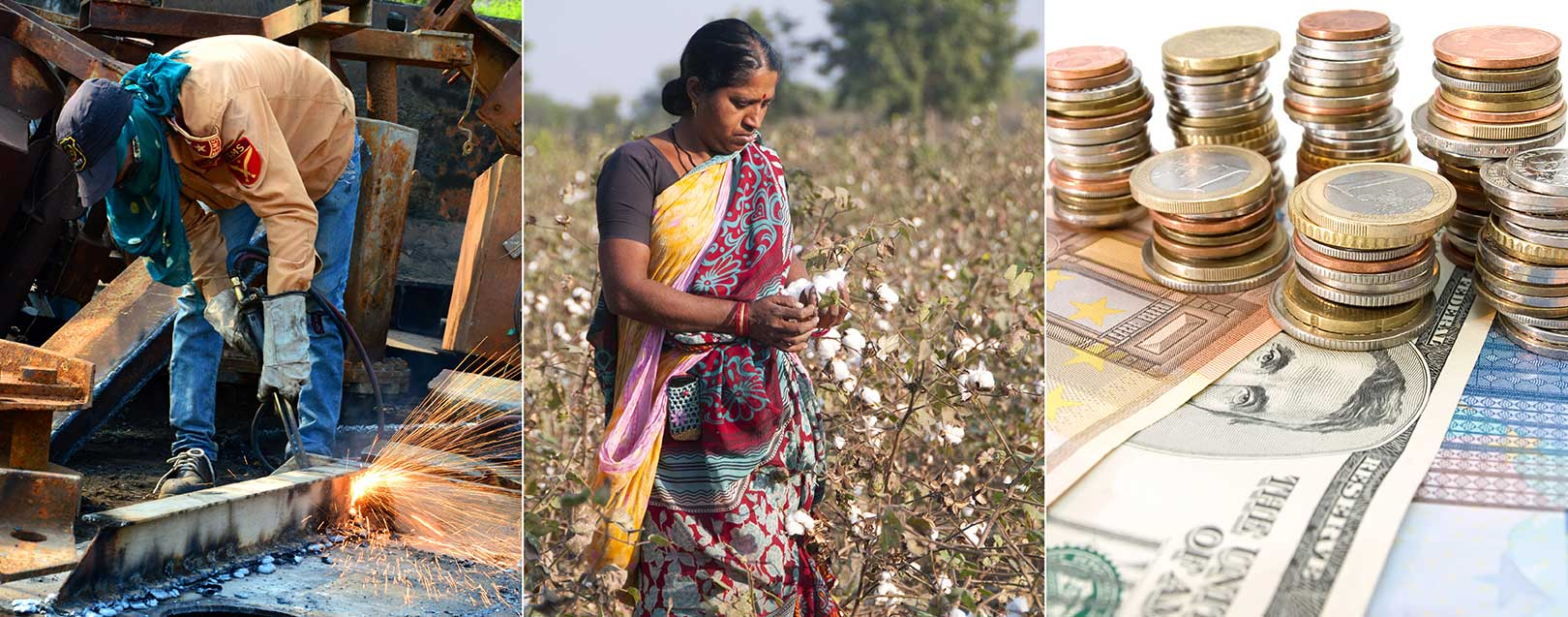 Marginal growth in core sector industries; Cotton sowing pushes up Kharif sowing acreage; Forex reserves hit life-time highs