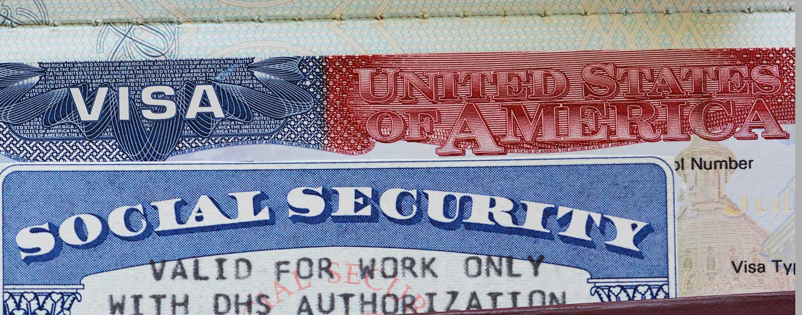 Number of issued O visas tripled in the past decade: US Senator
