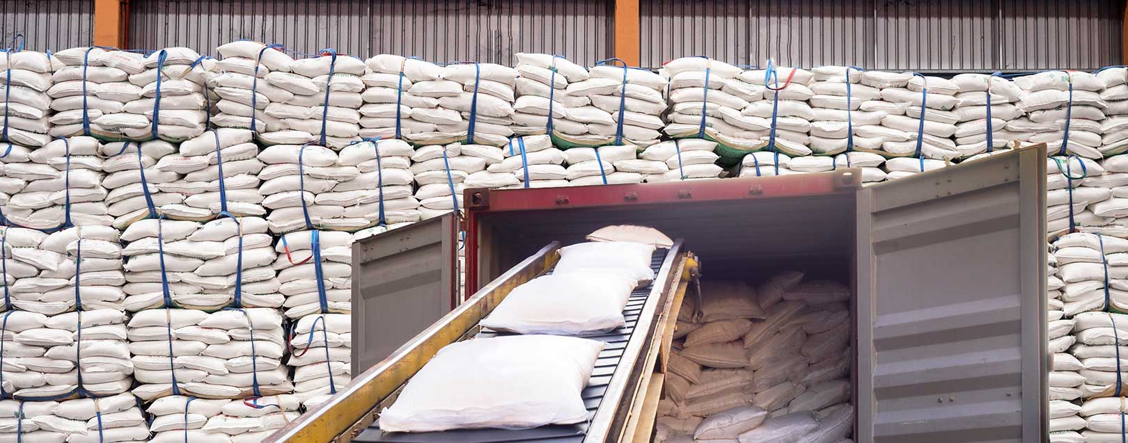 Allocation of sugar quantity for export under tariff rate quota, USDA