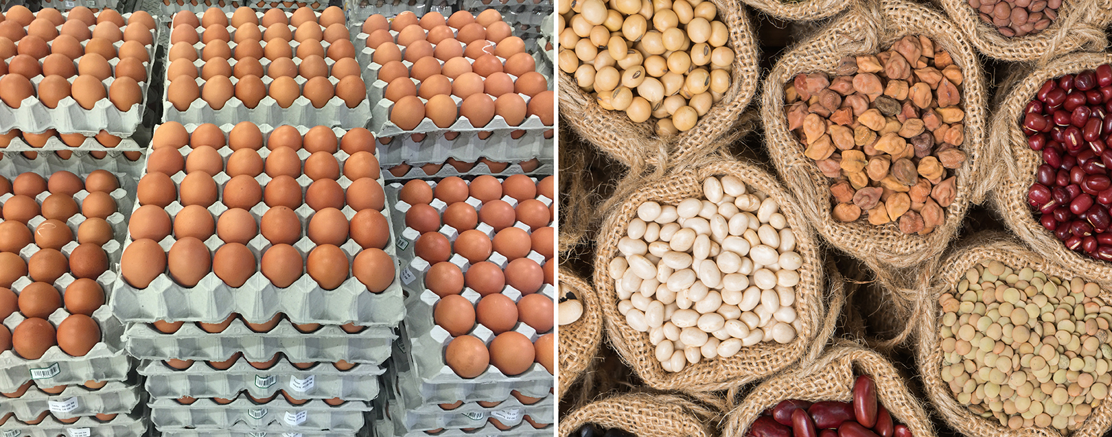 India restores supply of eggs and pulses to Maldives
