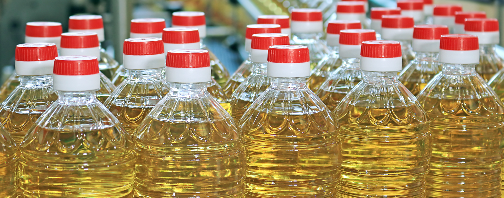 Govt raises import duty on edible oils to boost local prices