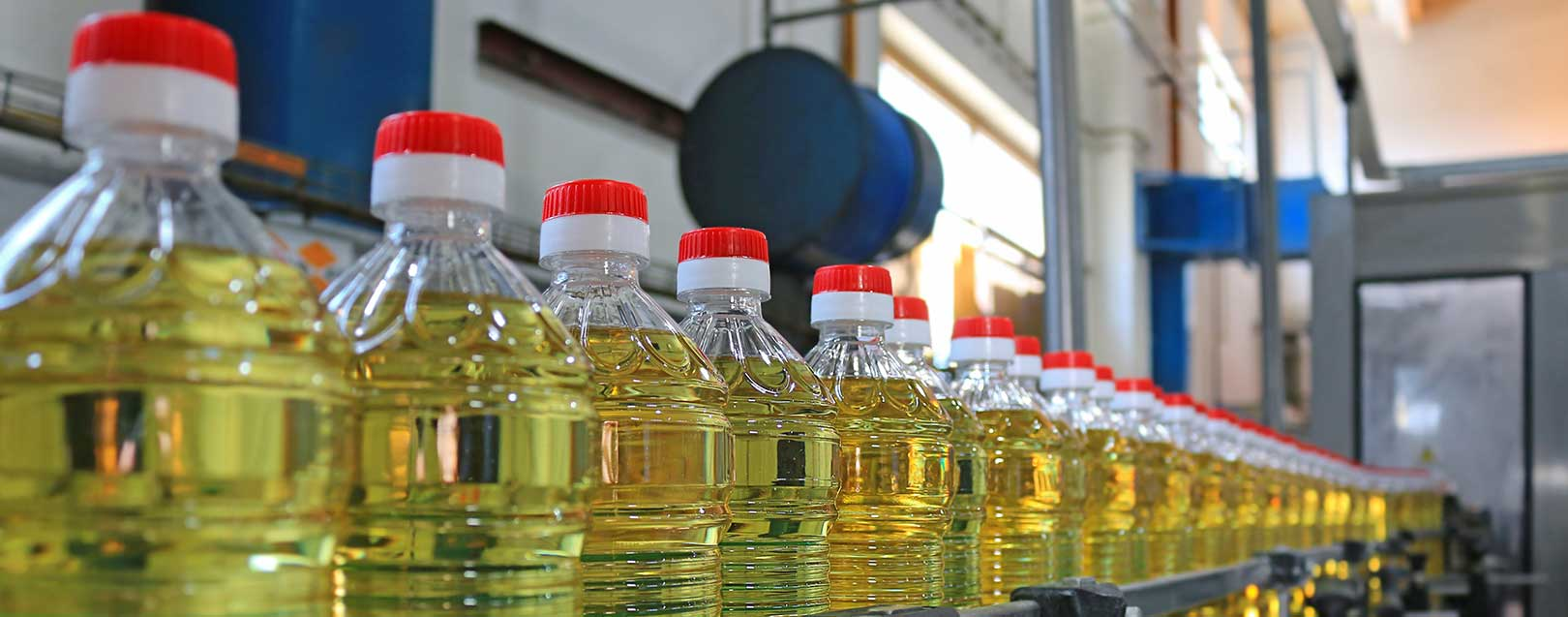 Industry demands hike in import duty on sunflower, soybean oils
