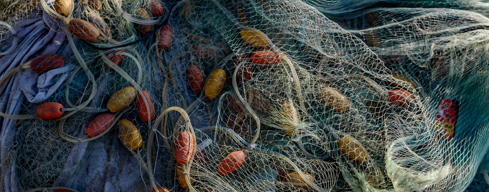Govt imposes ADD of $2.69/kg on fishnet imports from China, Bangladesh